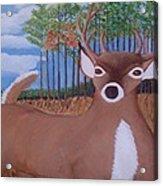 Whit Tall Buck Acrylic Print