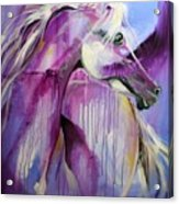 White Arabian Nights Acrylic Print by Laurie Pace