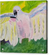 Pastel Feathered Cockatoo Acrylic Print