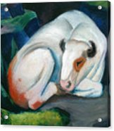 White Bull Resting In The Woods By Franz Marc Acrylic Print