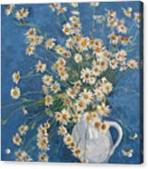 White Chamomile Flowers With Blue Background Acrylic Print