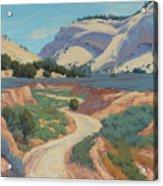 White Cliffs Of Johnson Canyon 18x24 Acrylic Print
