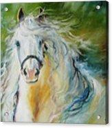 White Cloud The Andalusian Stallion Acrylic Print