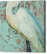 White Crane Acrylic Print by Billie Colson
