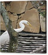 White Crane On Roof Acrylic Print