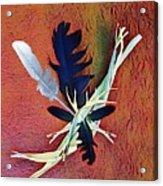 White Feather Acrylic Print
