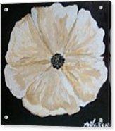 White Flower On Black Acrylic Print