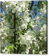 White Flowers 2 Acrylic Print