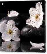 White Flowers Black Stones Acrylic Print