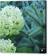 White Flowers W14 Acrylic Print