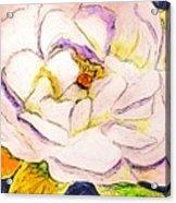 White Gardenia Acrylic Print