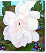 White Gardenia With Virginia Creepers Acrylic Print