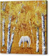 White Horse In Golden Woods Acrylic Print