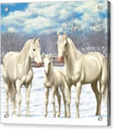 White Horses In Winter Pasture Acrylic Print by Crista Forest