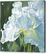 White Iris Acrylic Print by Sharon Freeman