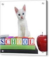 White Kitten Back To School Acrylic Print