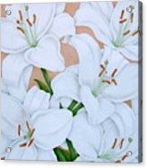 White Lilies Acrylic Print