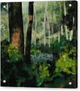White Mountain Woods Acrylic Print