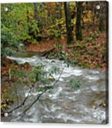 White Oak Run Autumn Acrylic Print