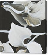 White Orchid Middle Section Acrylic Print