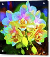 White Orchids Pastel Acrylic Print
