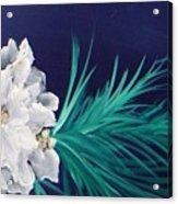 White Poinsettia On Blue Acrylic Print