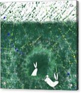 White Rabbits  Acrylic Print