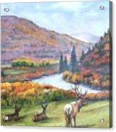 White River Acrylic Print