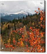 White River National Forest Autumn Panorama Acrylic Print