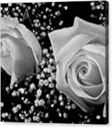 White Roses Bw Fine Art Photography Print Acrylic Print