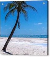 White Sand Beaches And Tropical Blue Skies Acrylic Print