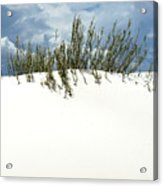 White Sand Green Grass Blue Sky Acrylic Print