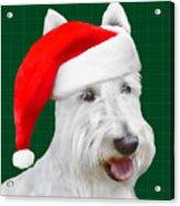 White Scottish Terrier Christmas Plaid Acrylic Print