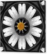 White Shimmering Flower Acrylic Print