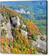 White Side Mountain Fool's Rock In Autumn Vertical Acrylic Print