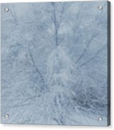 White Tree Acrylic Print