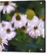 White Triangle Flowers Acrylic Print