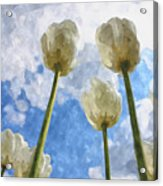 White Tulips And Cloudy Sky Digital Watercolor Acrylic Print