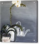 White Wild Orchid Acrylic Print