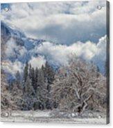 White Yosemite Acrylic Print