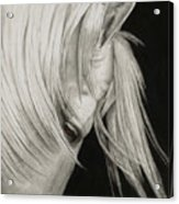 Whitefall Acrylic Print