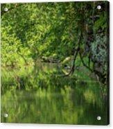 Whitewater River Scene 50 Acrylic Print