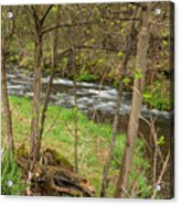 Whitewater River Spring 43 Acrylic Print