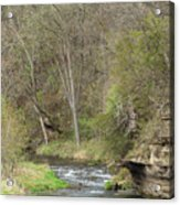 Whitewater River Spring 45 B Acrylic Print