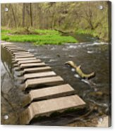 Whitewater River Spring 52 Acrylic Print