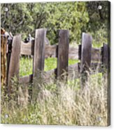 Who Ate The Fence Acrylic Print