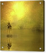 A Silent Autumn Morning Acrylic Print