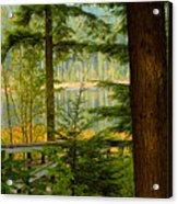 Whonnock Lake Through The Trees Acrylic Print