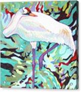 Whooping Crane Cynthia Acrylic Print