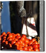 Who's Tomatoes Acrylic Print